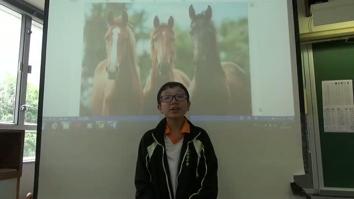 中文科:塞翁失馬 焉知非福